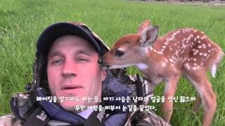 Download 구해준 사람에게 뽀뽀하는 사슴~ Video