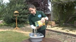 Download Nature's Feast Wild Bird Feeding Guide Video