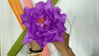 Download D.I.Y - How to make paper flower - Peony Làm hoa mẫu đơn bằng giấy nhún Video