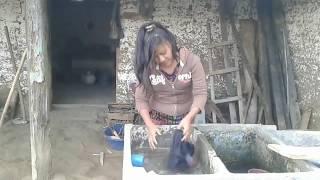 Download casos en la vida real ( la Tomasita y el Pedro) Video
