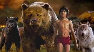 Download The Jungle Book 2016 - Best Scenes Video