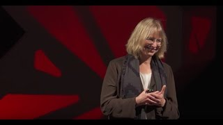 Download Nature's internet: how trees talk to each other in a healthy forest   Suzanne Simard   TEDxSeattle Video