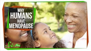 Download Why Do Humans Have Menopause? Video