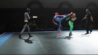 Download Batman and Robin vs Spider-Man - Full MMA Fight Video