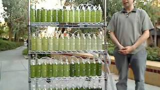 Download An Algae Bioreactor from Recycled Water Bottles Video