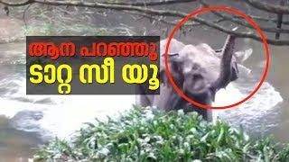 Download കുട്ടിയാനയെ രക്ഷിച്ച നാട്ടുകാർക്ക് ടാറ്റ പറഞ്ഞ് അമ്മയാന | Baby Elephant rescued in Kerala Video