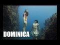 Download Volcanic Dominica: Adventures on One Breath #1 Video