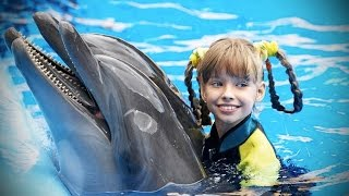 Download Dolphins 🐬 Smart, Beautiful, Funny Dolphins! [Funny Pets] Video