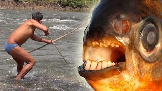 Download INDIAN BOWFISHING GIANT PACU - Amazon River Monsters Video
