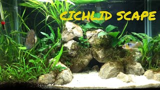Download Cichlid Scape   Cichlid Scaping Video