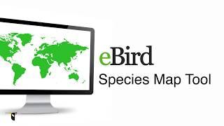 Download Explore Species Maps - eBird Essentials Video
