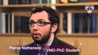 Download Best Vet Schools - Spotlight on Penn Vet at University of Pennsylvania Video