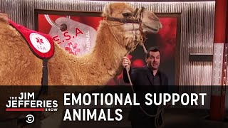 Download Leave Your Emotional Support Camel At Home - The Jim Jefferies Show Video