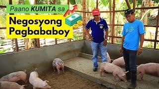 Download Paano Kumita sa Pag-aalaga ng Palakihing Baboy Video