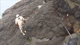 Download GIANT WHITE EEL CAUGHT FISHING (Approximately 4ft & over 10lb) Video