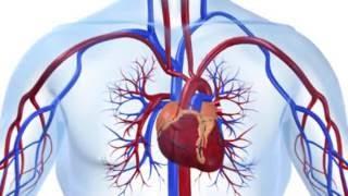 Download Você sabe o que é angioplastia? Video