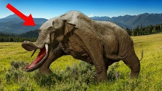 Download Most MYSTERIOUS Prehistoric Beasts That Ever Lived! Video