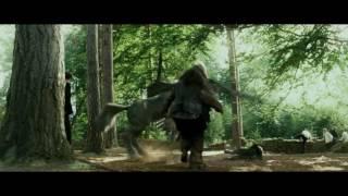 Download Гарри/Драко - Если ты меня не любишь Video