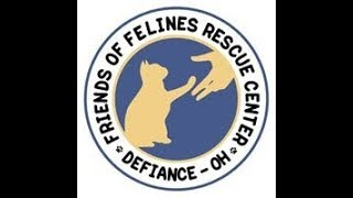 Download FOFRescueCenter Live Stream © Video