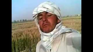Download Pashto Funny 2012.mp4 Video