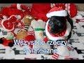Download Wszystkie rzeczy świąteczne Sonii Video