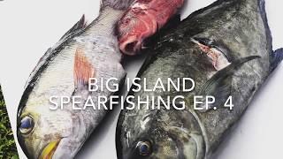 Download Big Island Spearfishing Episode 4 Video