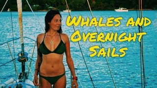 Download Sailing Nandji - Ep 14, Whales and Overnight Sails Video