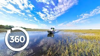 Download Let's Go Places: Florida | Swamp Things (360 Video) Video