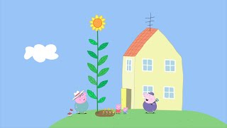 Download We Love Peppa Pig Peppa and George's Garden #12 Video