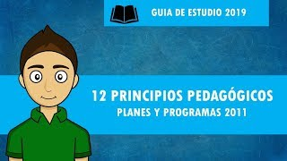 Download 12 PRINCIPIOS PEDAGÓGICOS planes y programas 2011 Video