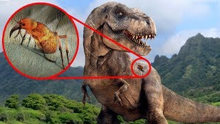 Download Most SURPRISING Recent Discoveries About DINOSAURS! Video