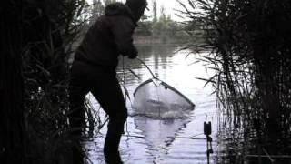 Download Amur a třešně Video