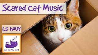 Download Soothing Music for Scared Cats - Music to Help Your Cat Relax! Soothing Music for Cats Video