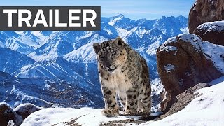 Download Planet Earth II: Official Extended Trailer - BBC Earth Video