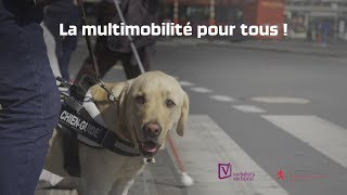 Download La multimobilité pour tous ! Video