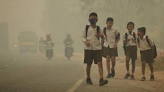 Download Unicef: uno de cada siete niños en el mundo respira aire tóxico - world Video