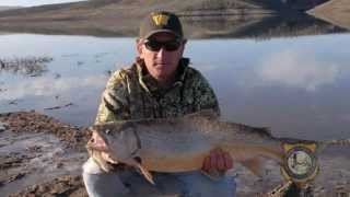 Download Fishing Records Fall in Wyoming Video