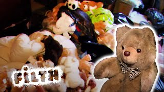 Download Fleas, Faeces and a Room Full of Teddy Bears Video