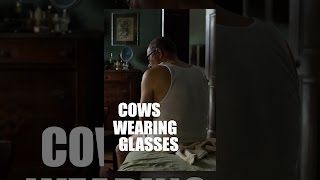 Download Cows Wearing Glasses Video