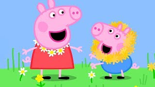 Download Peppa Pig Official Channel | Peppa Pig's Fun Time with Cousin Chloe Video
