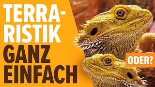Download Terraristik ganz einfach, oder? | NORBERT ZAJAC | Zoo Zajac, Duisburg Video
