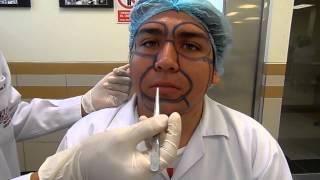 Download VIDEO REGIONES DE LA CARA Video