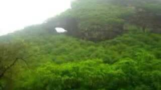 Download Natural Forests of Arabia (Yemen) اليمن Video