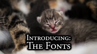 Download Introducing: The Fonts Video