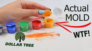 Download A TOTAL MESS...TESTING $1 DOLLAR TREE PAINT Video