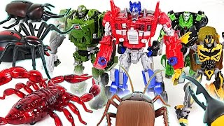 Download Transformers VS Insect army!! Save Peppa Pig from Robot spider, Scorpion, Cockroach!! - DuDuPopTOY Video