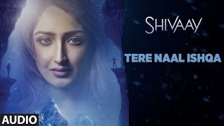Download TERE NAAL ISHQA Full Audio Song || SHIVAAY || Kailash Kher | Ajay Devgn | T-Series Video