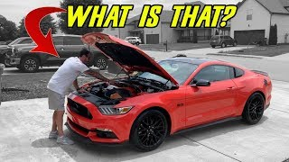 Download FRIEND BOUGHT A 2016 MUSTANG GT - HE DIDN'T KNOW IT HAD THESE ″SPECIAL″ UPGRADES Video