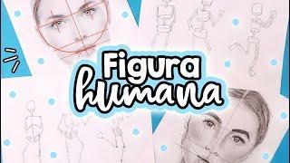 Download ¿Cómo dibujar la figura y rostro humano? PASO A PASO! ✄ Barbs Arenas Art! Video