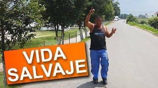 Download Personas Salvajes | BROMA PESADA EN LA CALLE Video